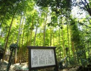 mouchiku-300x235