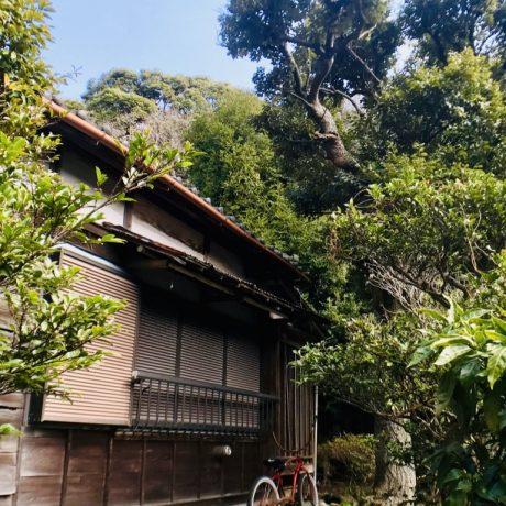 [神奈川]古都鎌倉・緑豊かな環境の大正時代築98年の古民家