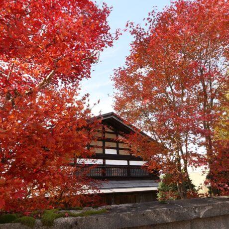 【明治21年築】広い敷地で畑・池・庭など暮らしを愉しむ雪国の家
